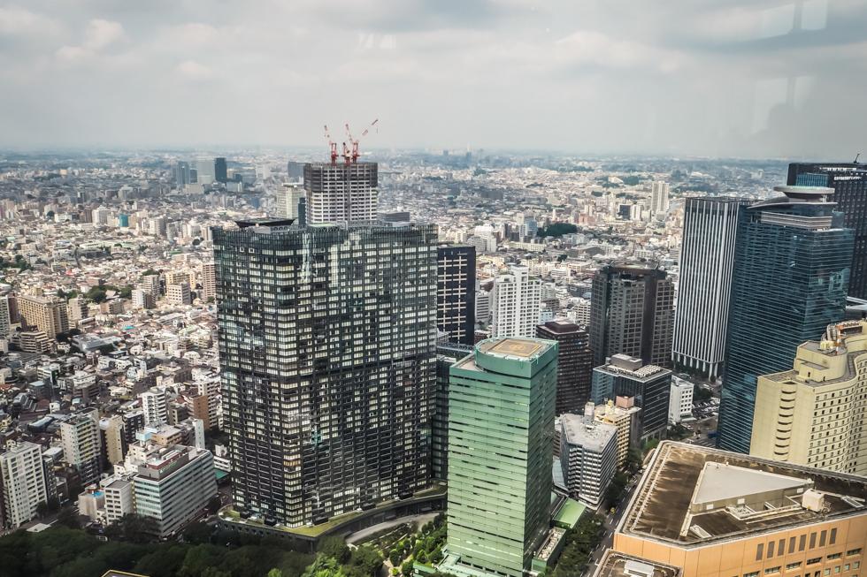 Pájuška na cestách - Tokyo - Shinjuku