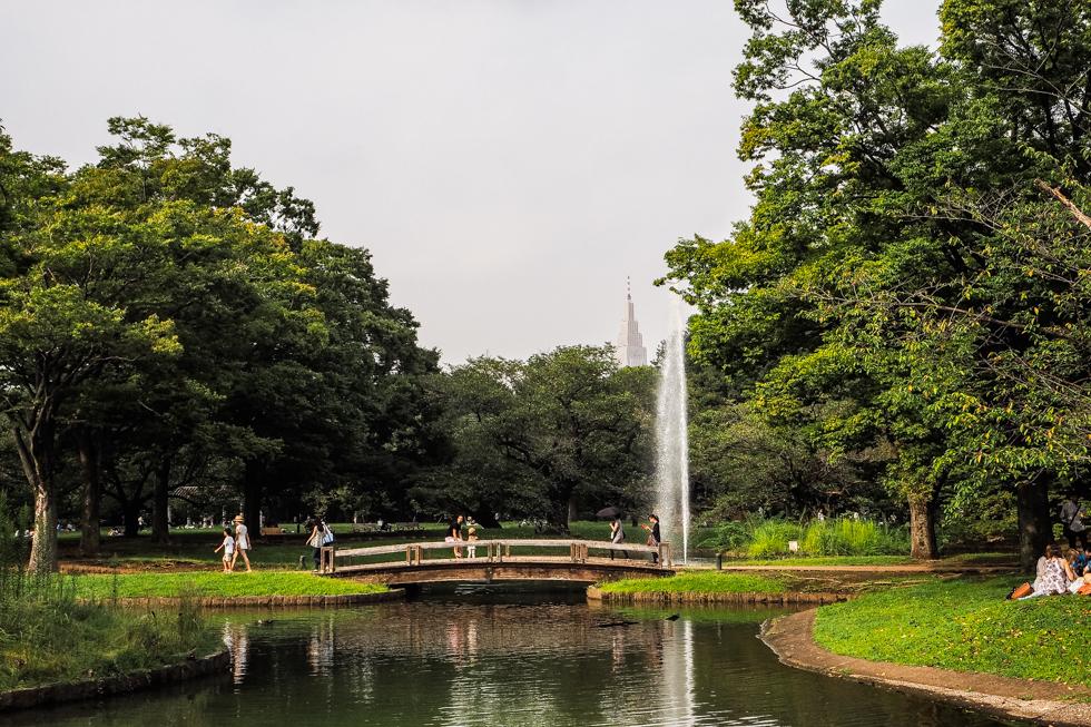 meiji jingu garden, tokyo, japan