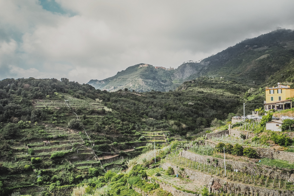 pajuska-na-cestach-cinque-terre-corniglia-italy