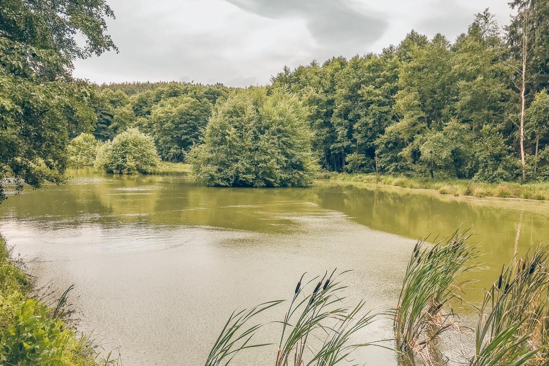 pajuska-na-cestach-domazlice-zelenovske-udoli
