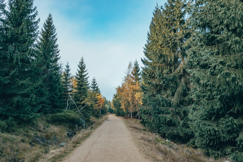 pajuska-na-cestach-jizerske-hory
